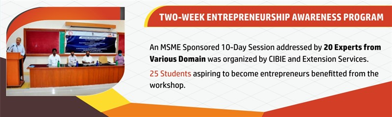 Two week entrepreneurship awareness program